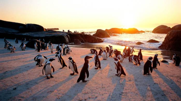 beautiful-Pictures-in-south-african3